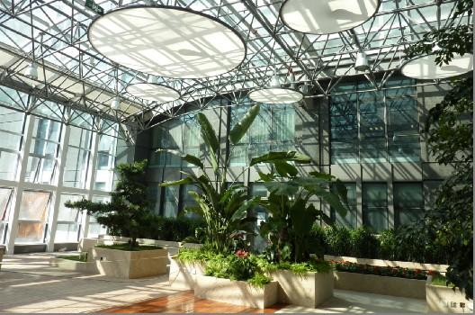 钢结构雨棚装饰工程